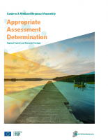 Appropriate Assessment Determination EMRA RSES