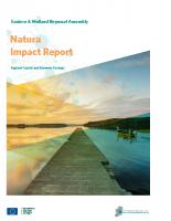 Natura Impact Report EMRA RSES